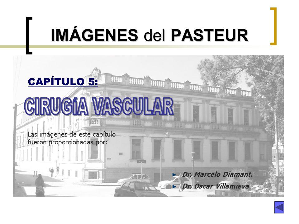 IMÁGENES del PASTEUR CAPÍTULO 5: Dr. Marcelo Diamant. Dr. Oscar Villanueva Las imágenes de este capítulo fueron proporcionadas por: