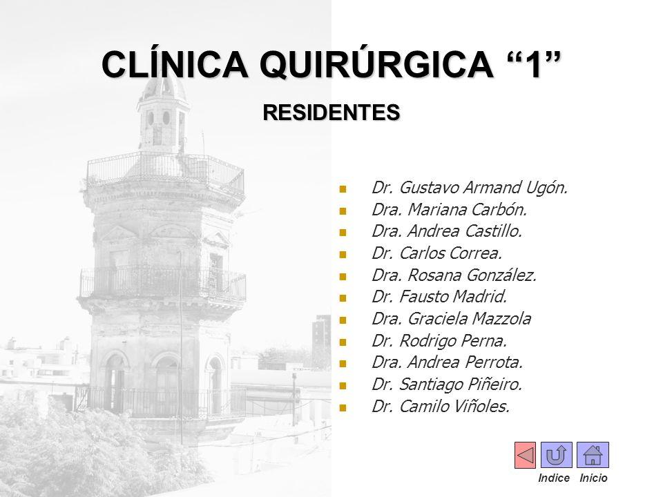 Dr. Gustavo Armand Ugón. Dra. Mariana Carbón. Dra. Andrea Castillo. Dr. Carlos Correa. Dra. Rosana González. Dr. Fausto Madrid. Dra. Graciela Mazzola