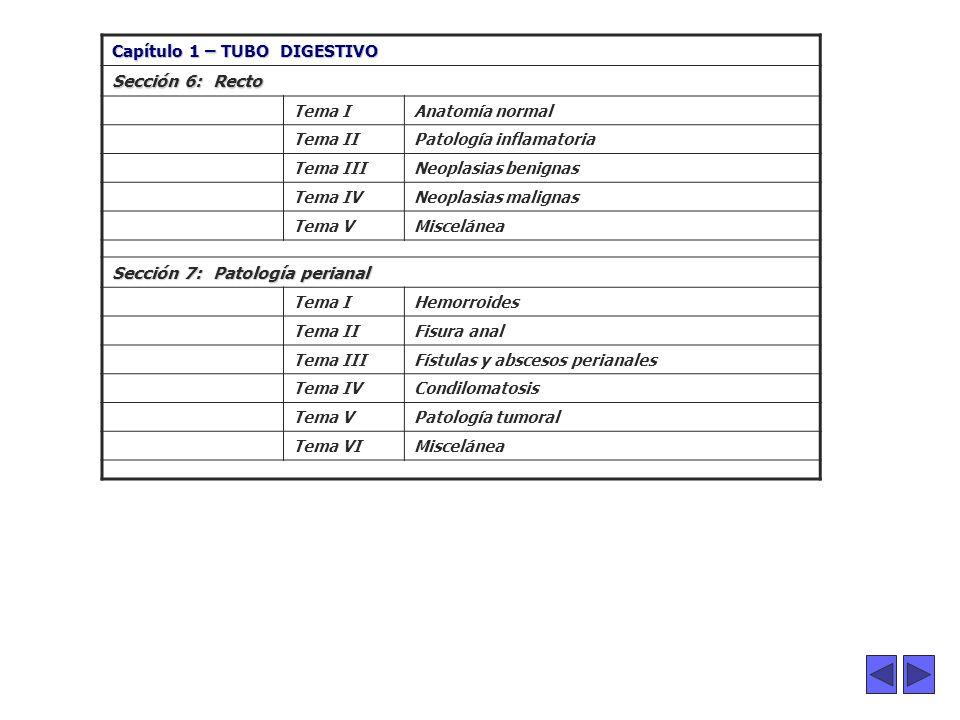 ...... Capítulo 1 – TUBO DIGESTIVO Sección 6: Recto Tema IAnatomía normal Tema IIPatología inflamatoria Tema IIINeoplasias benignas Tema IVNeoplasias