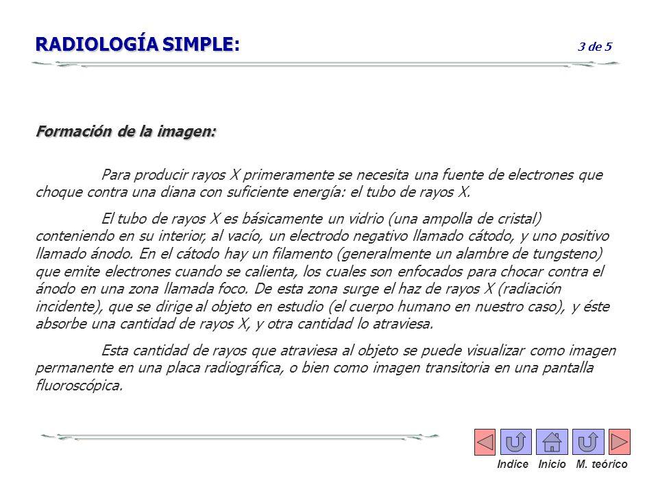 RADIOLOGÍA SIMPLE RADIOLOGÍA SIMPLE: 3 de 5 Formación de la imagen: Para producir rayos X primeramente se necesita una fuente de electrones que choque