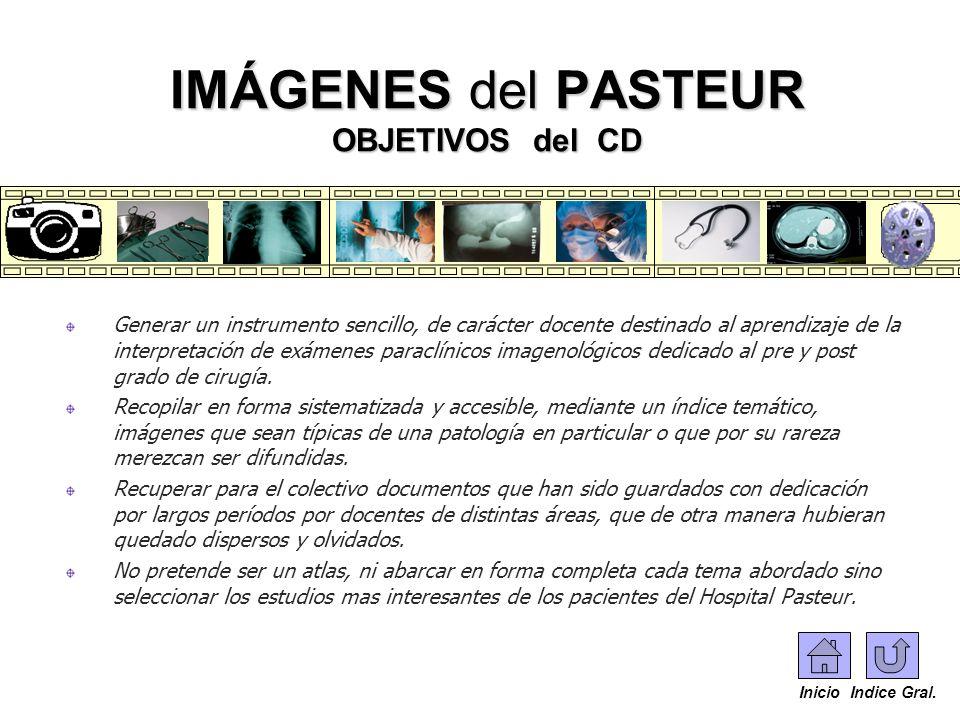 Generar un instrumento sencillo, de carácter docente destinado al aprendizaje de la interpretación de exámenes paraclínicos imagenológicos dedicado al