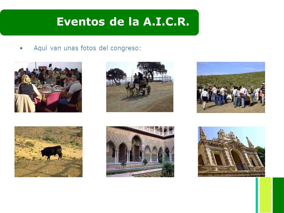 Aquí van unas fotos del congreso: Eventos de la A.I.C.R.