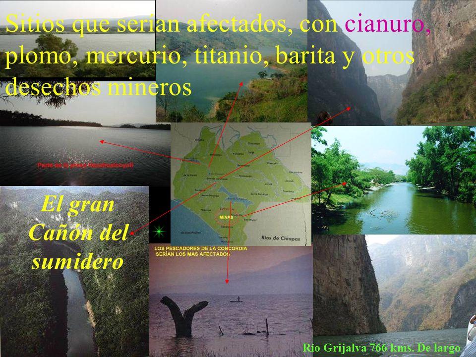 Municipios con concesiones mineras otorgadas por los gobiernos 2004-2008 corruptos ACACOYAGUA, Diana, Arena Negra ACAPETAHUA ANGEL ALBINO CORZO, 2 com