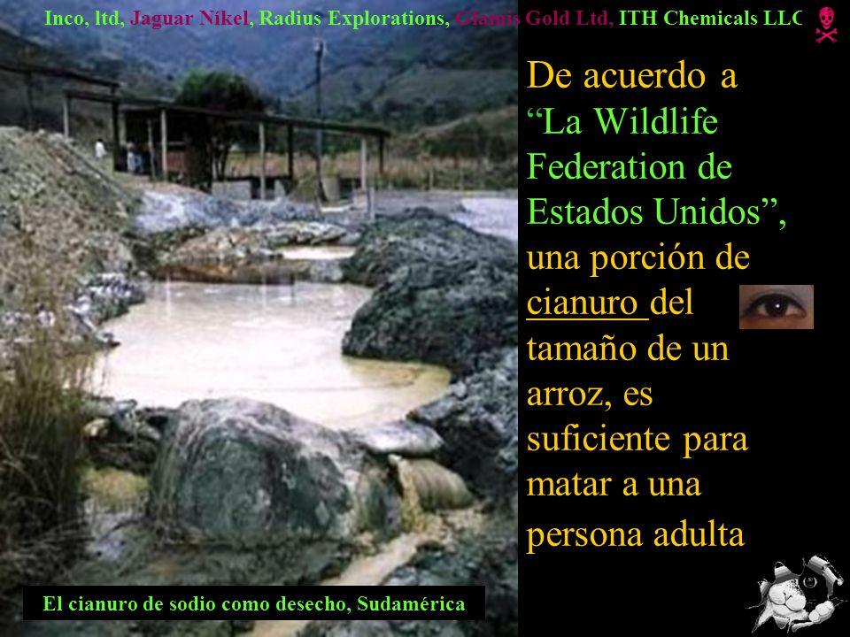 Las minas destruyen montañas, agua, paisaje, vida animal y humana La Grecia Foto: América del sur Chicomuselo