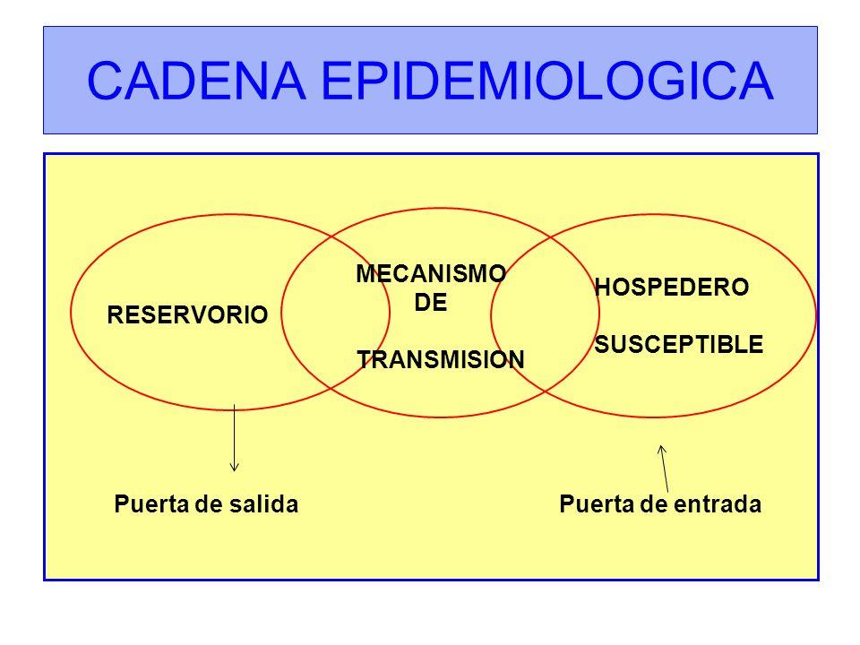 CADENA EPIDEMIOLOGICA RESERVORIO MECANISMO DE TRANSMISION HOSPEDERO SUSCEPTIBLE Puerta de salida Puerta de entrada