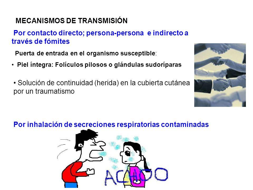 MECANISMOS DE TRANSMISIÓN Por inhalación de secreciones respiratorias contaminadas Por contacto directo; persona-persona e indirecto a través de fómit
