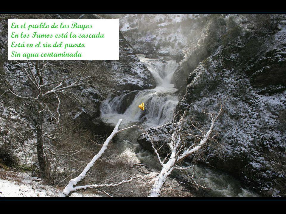 En el pueblo de los Bayos En los Fumos está la cascada Está en el rio del puerto Sin agua contaminada