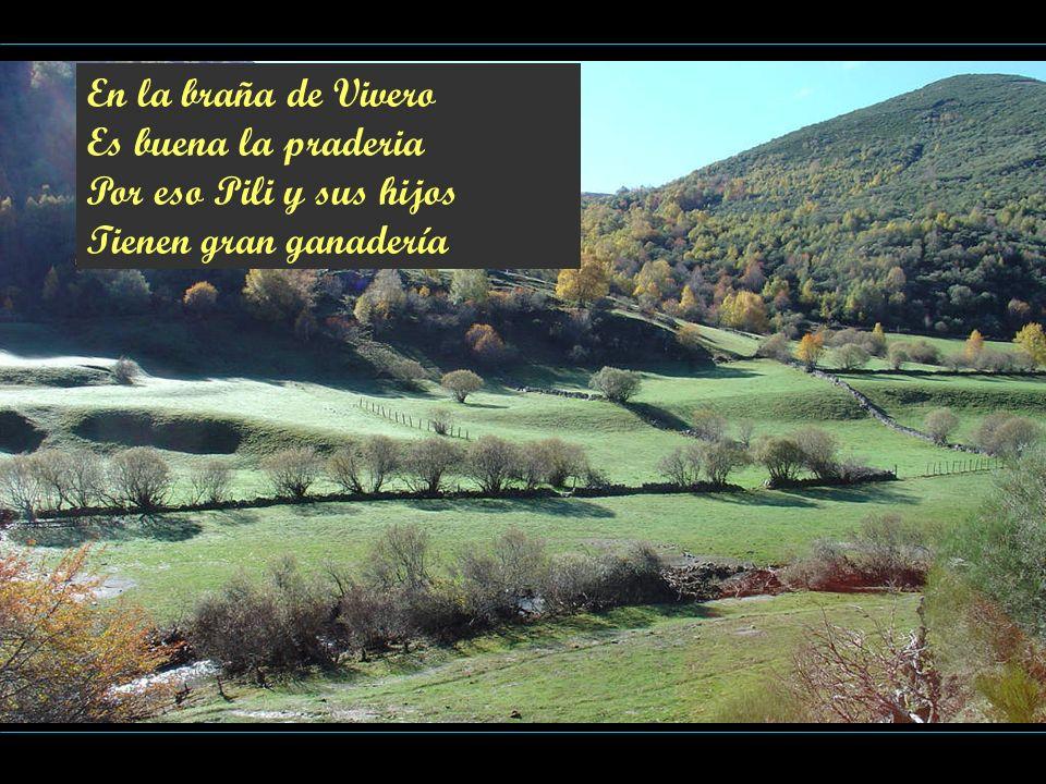 En la braña de Vivero Es buena la praderia Por eso Pili y sus hijos Tienen gran ganadería