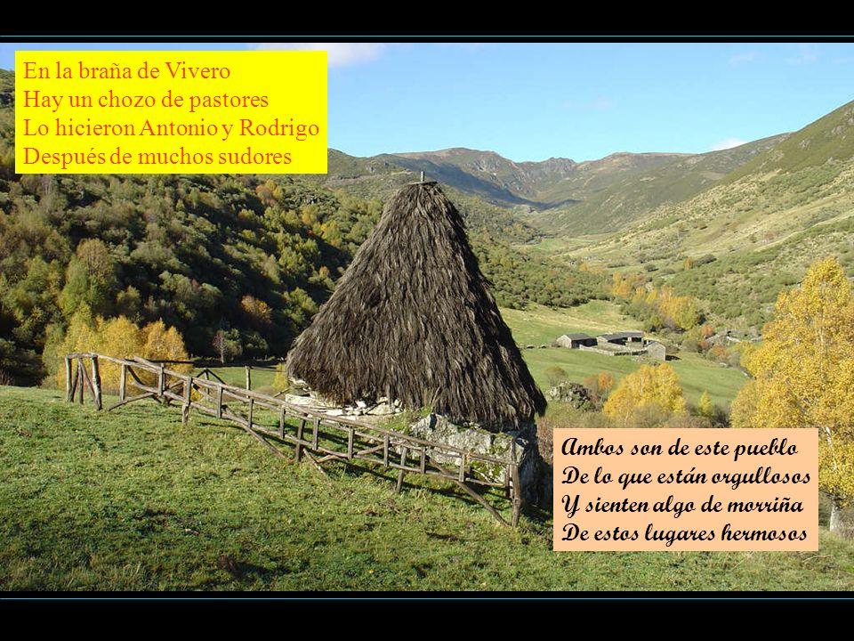 En la braña de Vivero Hay un chozo de pastores Lo hicieron Antonio y Rodrigo Después de muchos sudores Ambos son de este pueblo De lo que están orgull