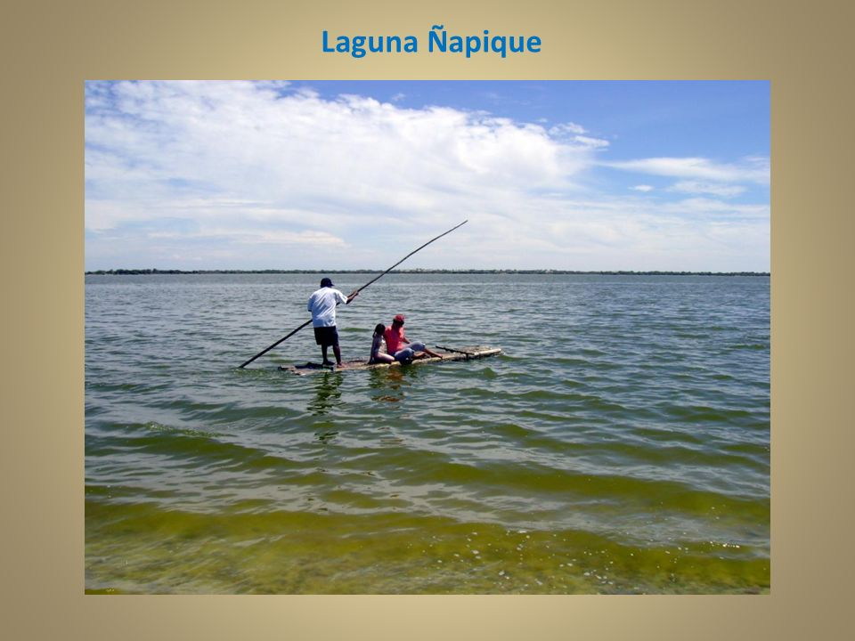 Laguna Ñapique