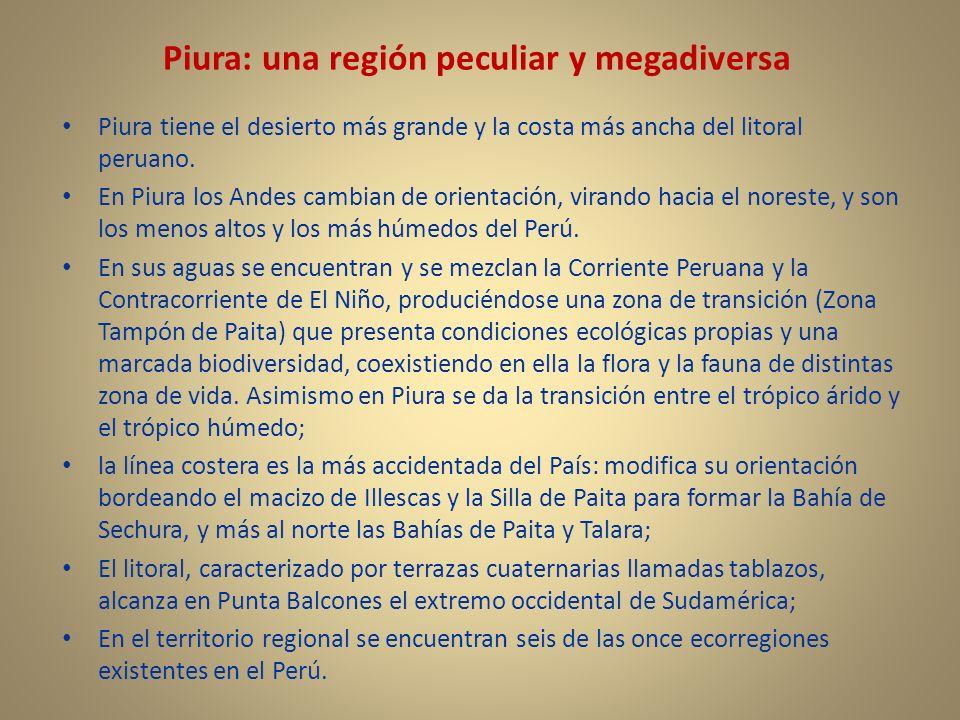 Piura: una región peculiar y megadiversa Piura tiene el desierto más grande y la costa más ancha del litoral peruano. En Piura los Andes cambian de or