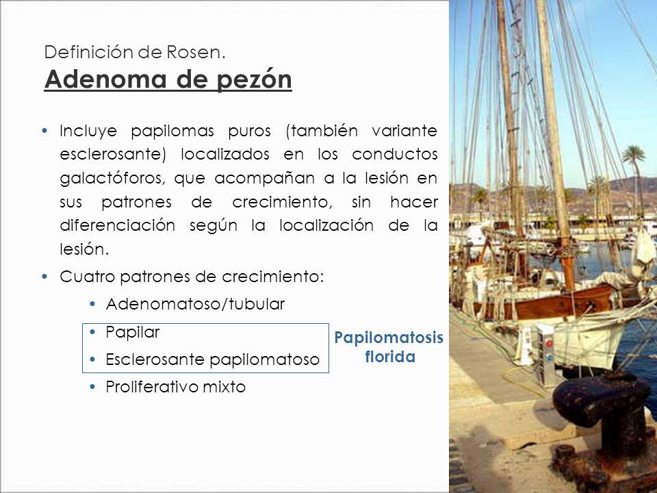 Definición de Rosen.