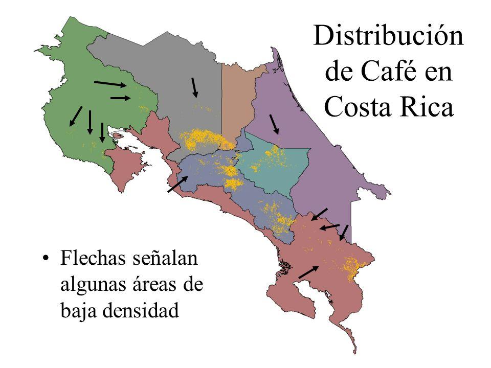Distribución de Café en Costa Rica Flechas señalan algunas áreas de baja densidad