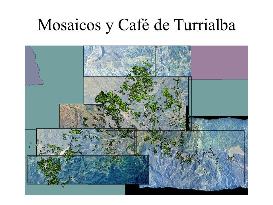 Mosaicos y Café de Turrialba