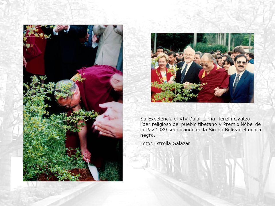 Su Excelencia el XIV Dalai Lama, Tenzin Gyatzo, líder religioso del pueblo tibetano y Premio Nóbel de la Paz 1989 sembrando en la Simón Bolívar el uca