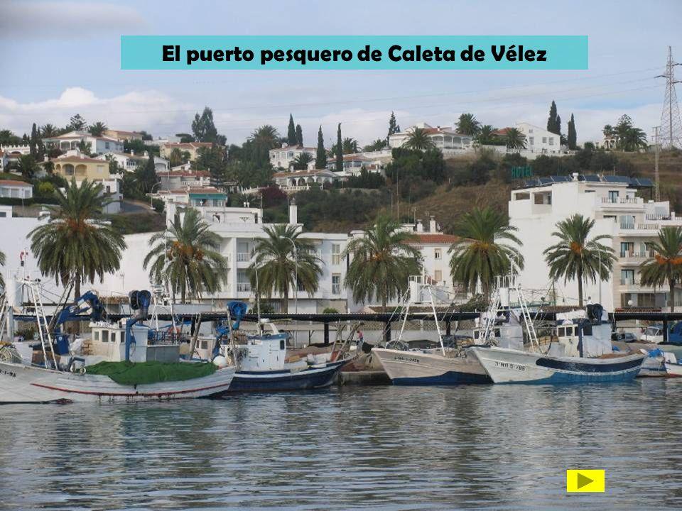 El puerto pesquero de Caleta de Vélez