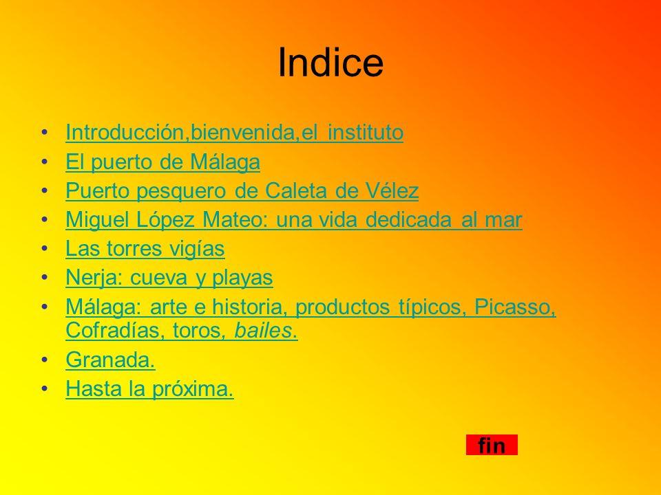 Indice Introducción,bienvenida,el instituto El puerto de Málaga Puerto pesquero de Caleta de Vélez Miguel López Mateo: una vida dedicada al mar Las to