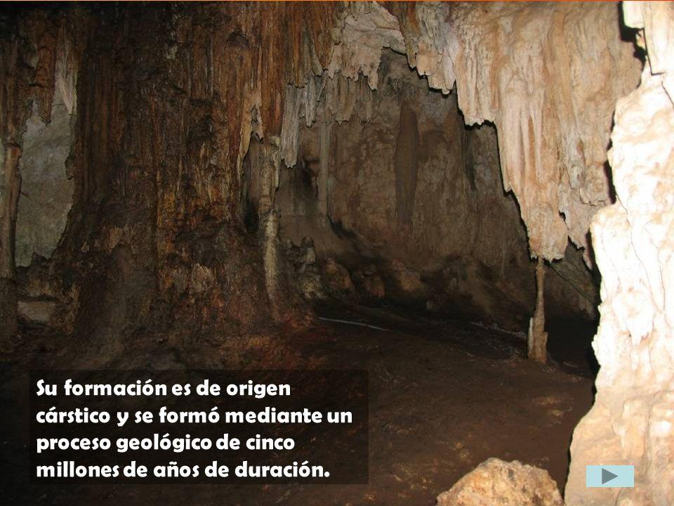 Su formación es de origen cárstico y se formó mediante un proceso geológico de cinco millones de años de duración.