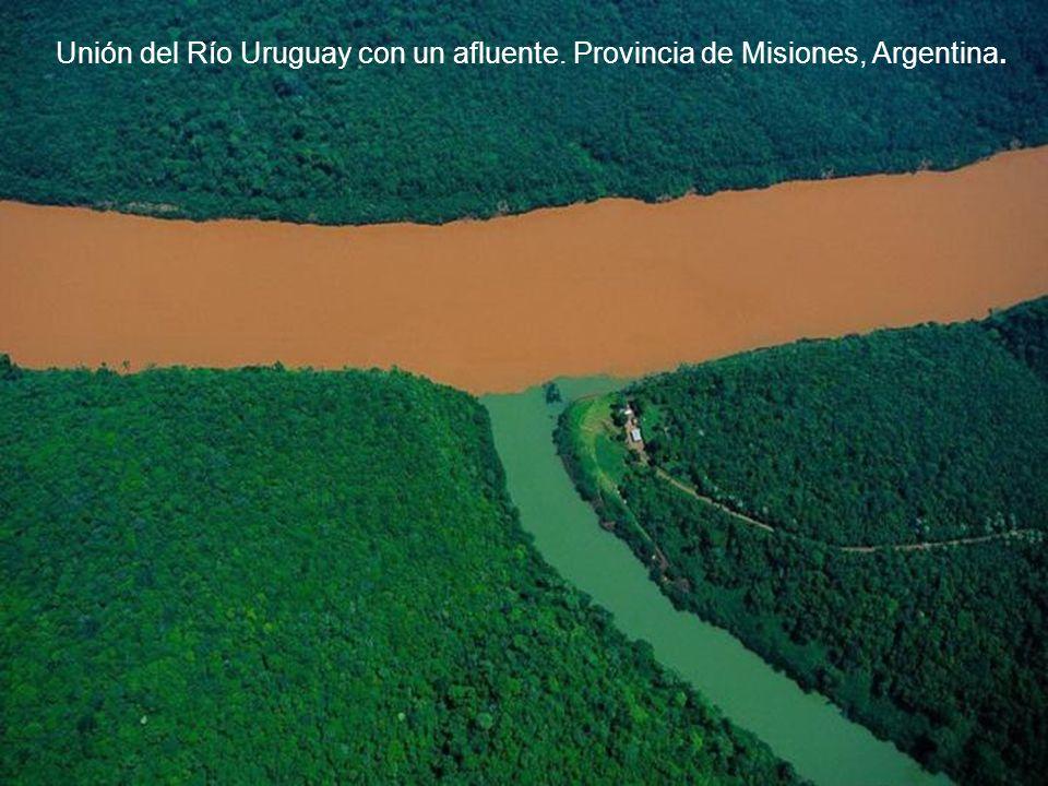 Unión del Río Uruguay con un afluente. Provincia de Misiones, Argentina.