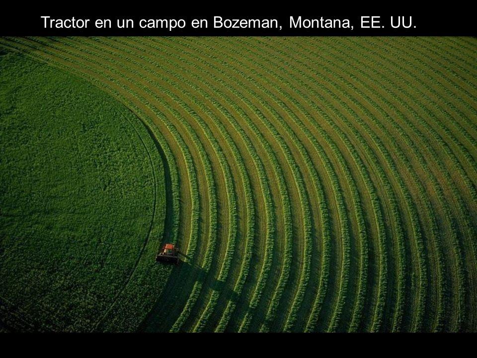Tractor en un campo en Bozeman, Montana, EE. UU.