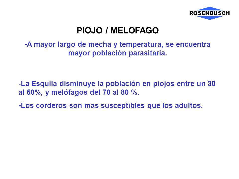 PIOJO / MELOFAGO -A mayor largo de mecha y temperatura, se encuentra mayor población parasitaria. -La Esquila disminuye la población en piojos entre u
