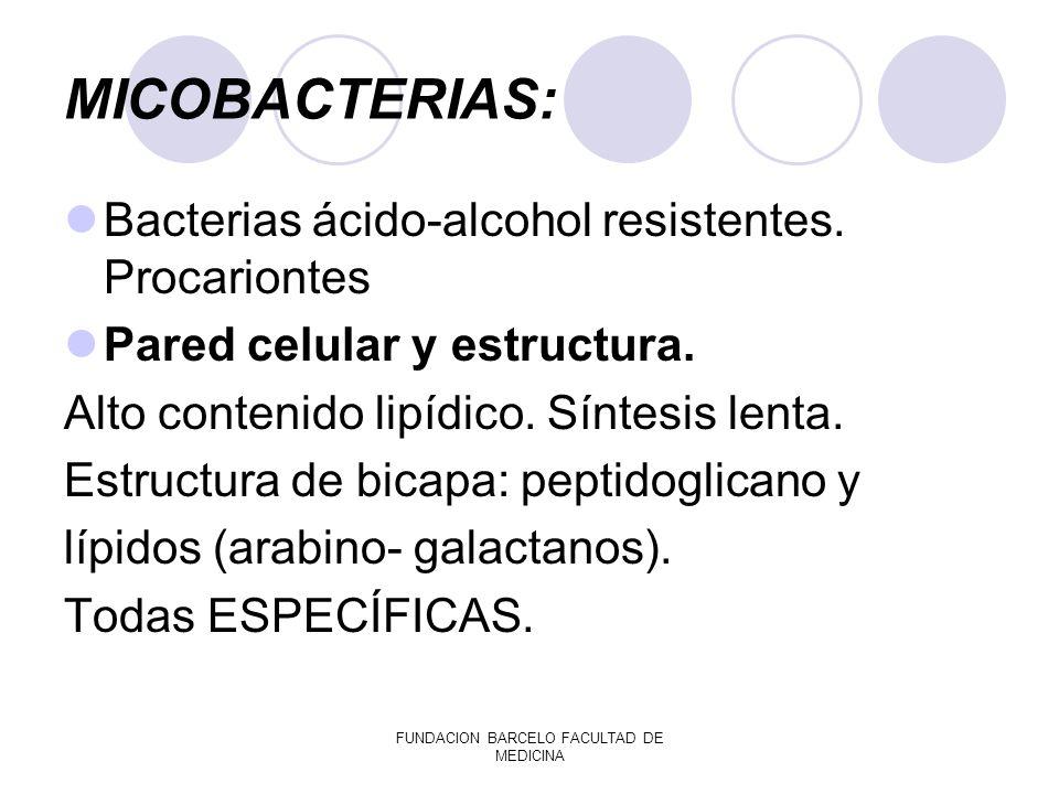 MICOBACTERIAS: Bacterias ácido-alcohol resistentes. Procariontes Pared celular y estructura. Alto contenido lipídico. Síntesis lenta. Estructura de bi