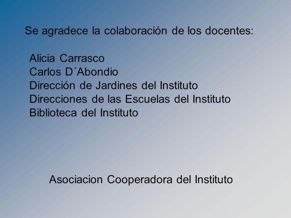 Se agradece la colaboración de los docentes: Alicia Carrasco Carlos D´Abondio Dirección de Jardines del Instituto Direcciones de las Escuelas del Inst