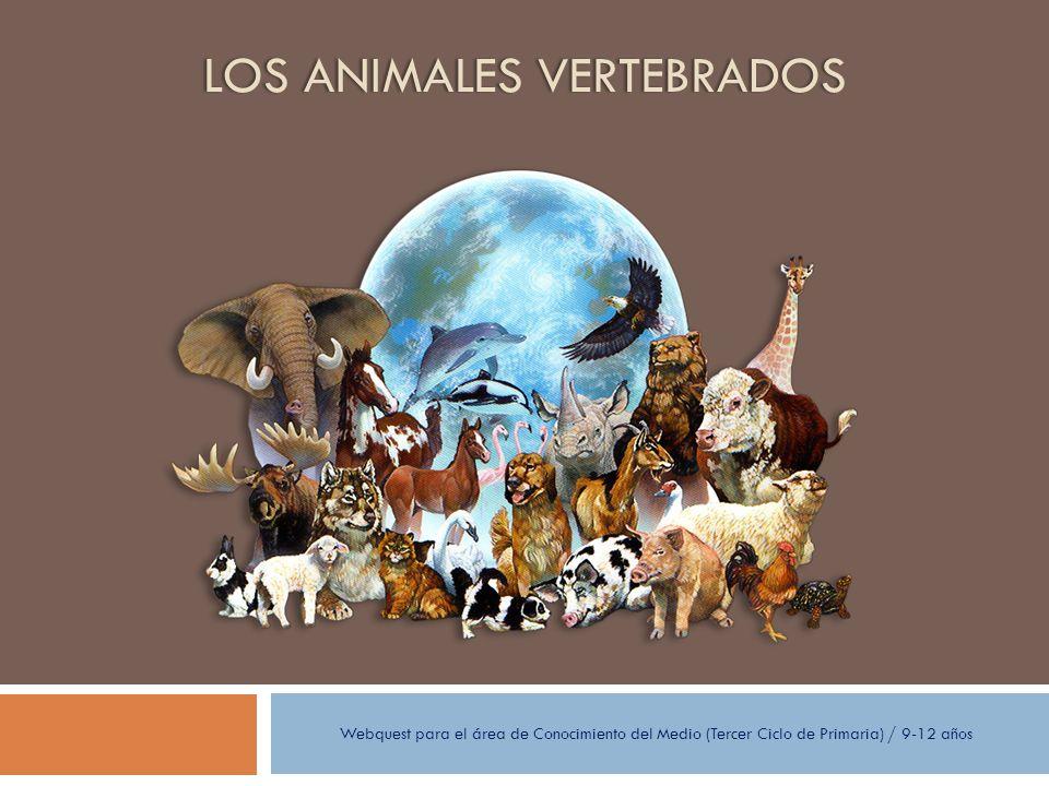LOS ANIMALES VERTEBRADOSLOS ANIMALES VERTEBRADOS Webquest para el área de Conocimiento del Medio (Tercer Ciclo de Primaria) / 9-12 años