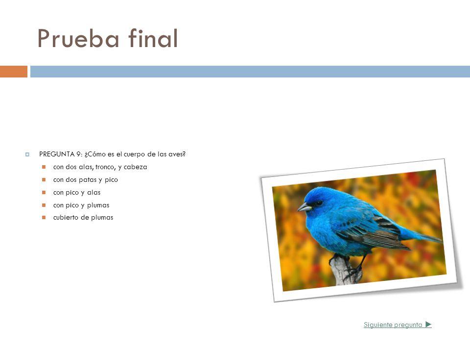 Prueba final PREGUNTA 9: ¿Cómo es el cuerpo de las aves? con dos alas, tronco, y cabeza con dos patas y pico con pico y alas con pico y plumas cubiert
