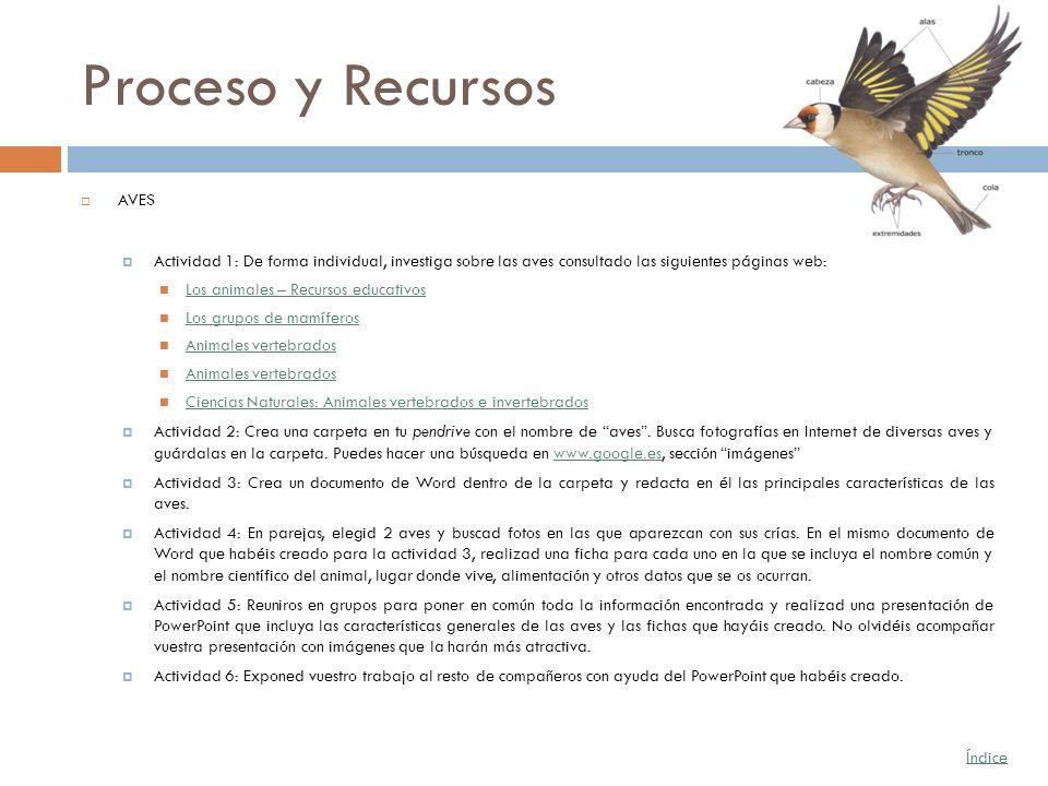 Proceso y Recursos AVES Actividad 1: De forma individual, investiga sobre las aves consultado las siguientes páginas web: Los animales – Recursos educ