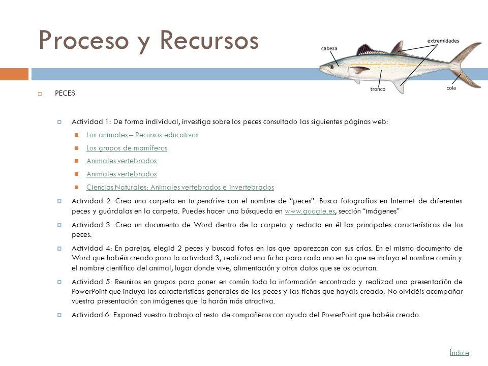 Proceso y Recursos PECES Actividad 1: De forma individual, investiga sobre los peces consultado las siguientes páginas web: Los animales – Recursos ed