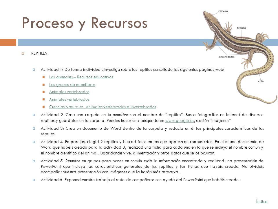 Proceso y Recursos REPTILES Actividad 1: De forma individual, investiga sobre los reptiles consultado las siguientes páginas web: Los animales – Recur