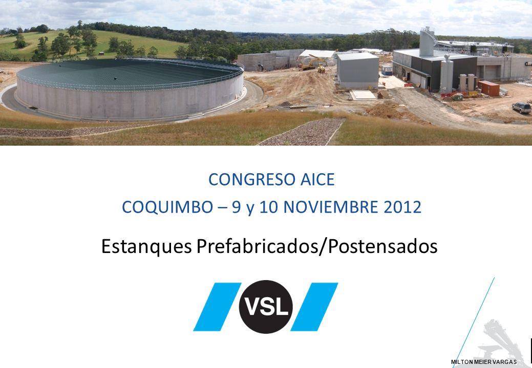 Large span cable-stayed bridges Estanques Prefabricados/Postensados CONGRESO AICE COQUIMBO – 9 y 10 NOVIEMBRE 2012 MILTON MEIER VARGAS