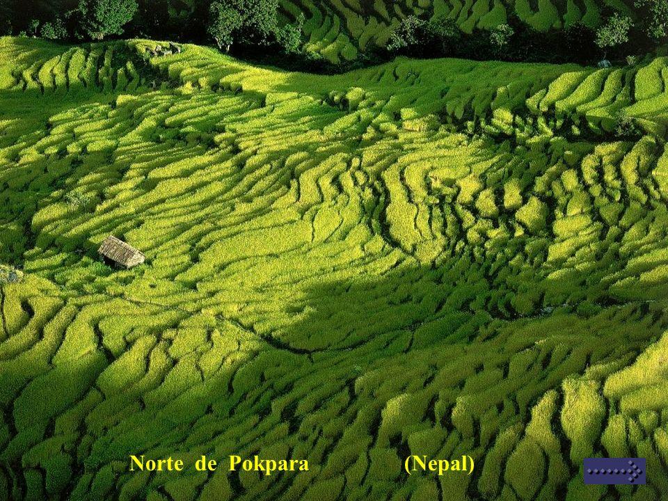 Norte de Pokpara (Nepal)