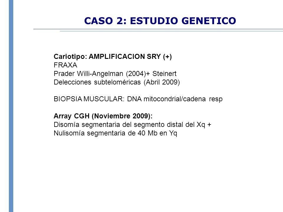 CASO 2: ESTUDIO GENETICO Cariotipo: AMPLIFICACION SRY (+) FRAXA Prader Willi-Angelman (2004)+ Steinert Delecciones subteloméricas (Abril 2009) BIOPSIA