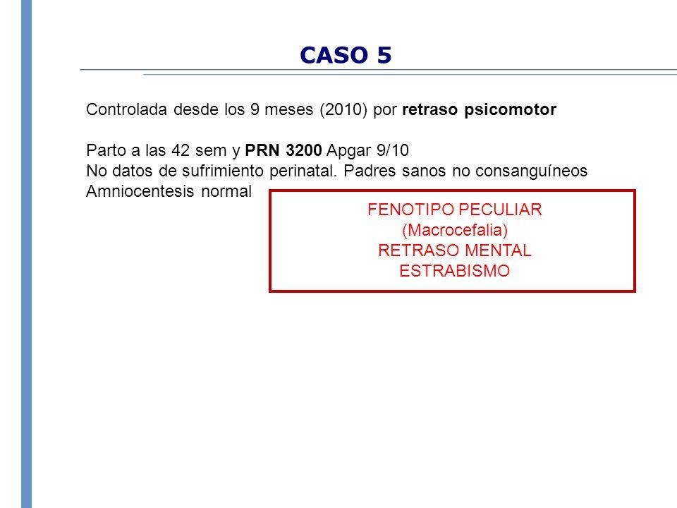 CASO 5 Controlada desde los 9 meses (2010) por retraso psicomotor Parto a las 42 sem y PRN 3200 Apgar 9/10 No datos de sufrimiento perinatal. Padres s