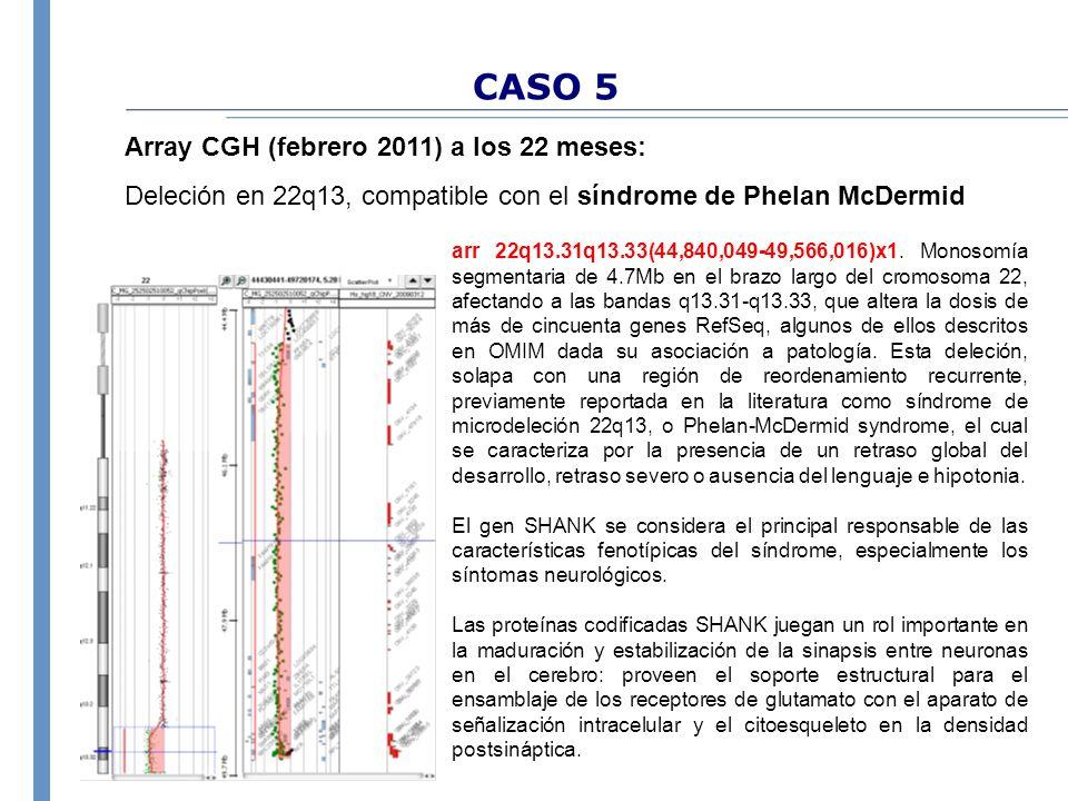 CASO 5 Array CGH (febrero 2011) a los 22 meses: Deleción en 22q13, compatible con el síndrome de Phelan McDermid arr 22q13.31q13.33(44,840,049-49,566,