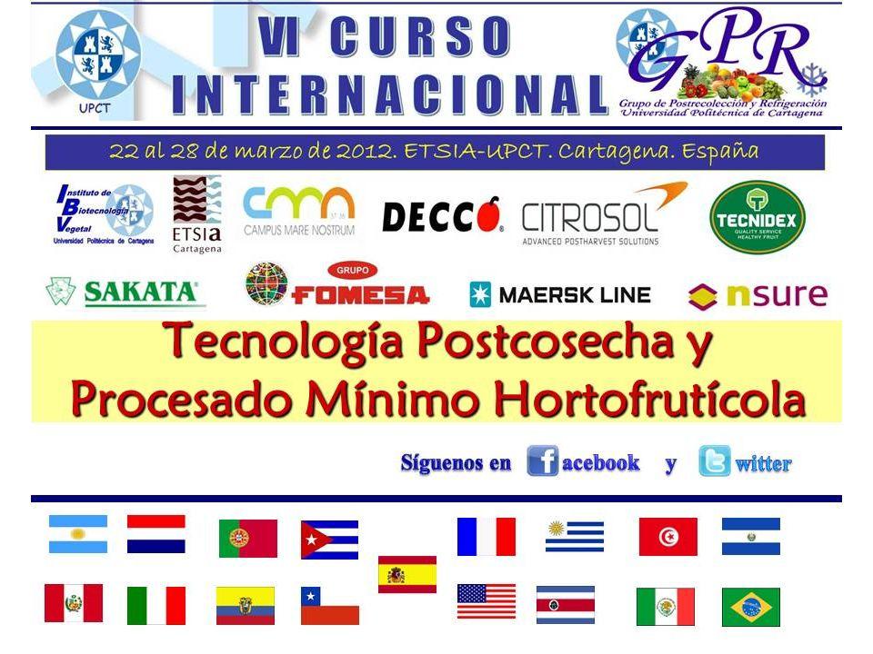 Director Curso Dr.Francisco Artés Calero Vicerrector de Doctorado y Calidad Dr.