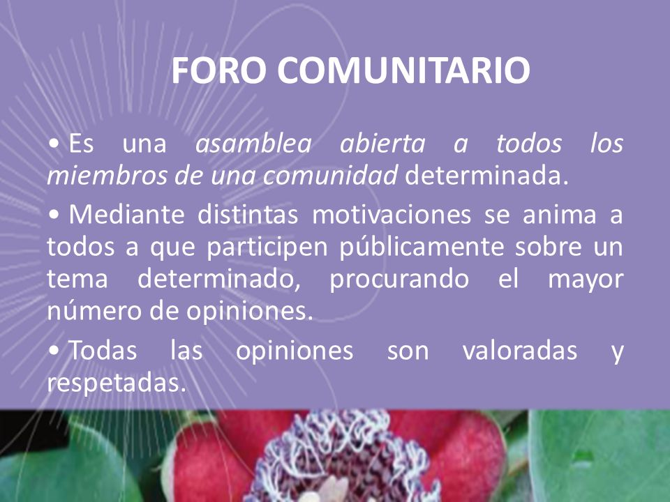 FORO COMUNITARIO Es una asamblea abierta a todos los miembros de una comunidad determinada. Mediante distintas motivaciones se anima a todos a que par