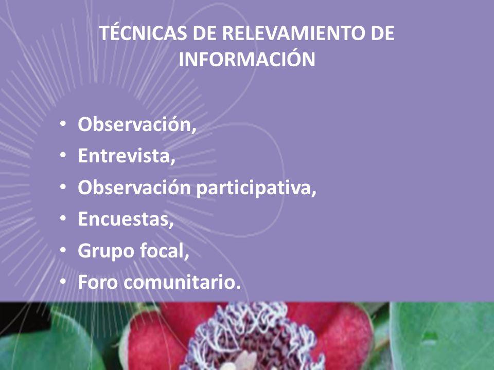 TÉCNICAS DE RELEVAMIENTO DE INFORMACIÓN Observación, Entrevista, Observación participativa, Encuestas, Grupo focal, Foro comunitario.