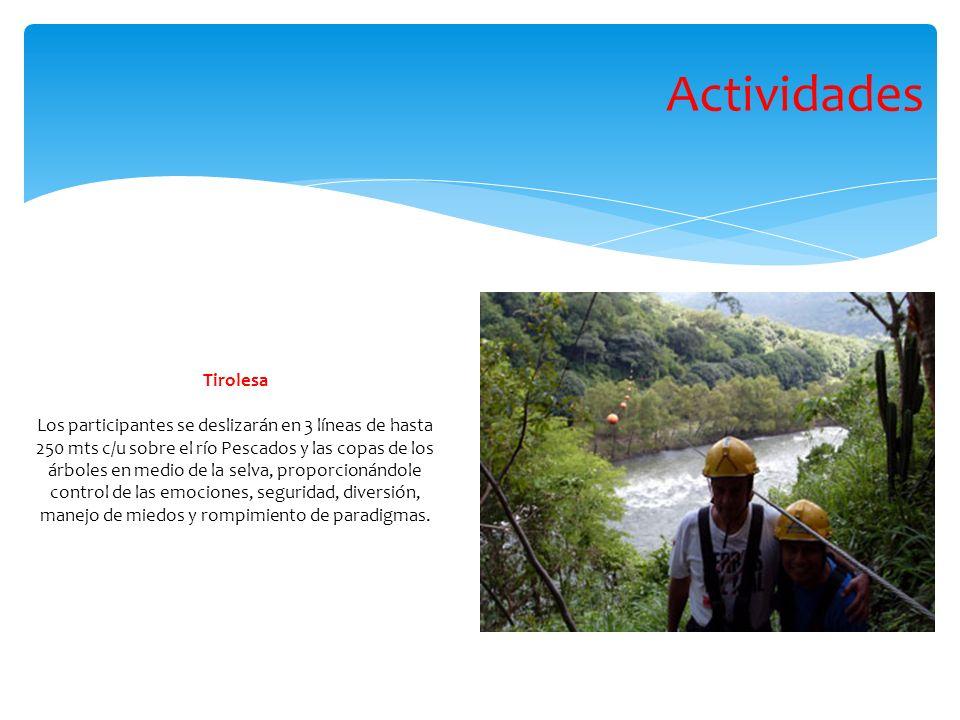Tirolesa Los participantes se deslizarán en 3 líneas de hasta 250 mts c/u sobre el río Pescados y las copas de los árboles en medio de la selva, proporcionándole control de las emociones, seguridad, diversión, manejo de miedos y rompimiento de paradigmas.