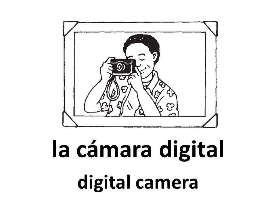 tomar fotos to take photos