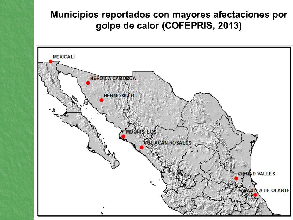 Municipios reportados con mayores afectaciones por golpe de calor (COFEPRIS, 2013)