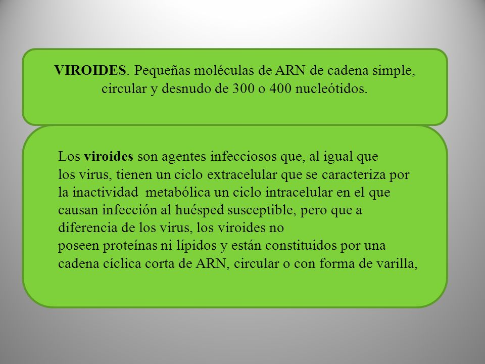 VIROIDES.Pequeñas moléculas de ARN de cadena simple, circular y desnudo de 300 o 400 nucleótidos.