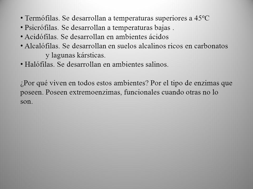 Termófilas.Se desarrollan a temperaturas superiores a 45ºC Psicrófilas.