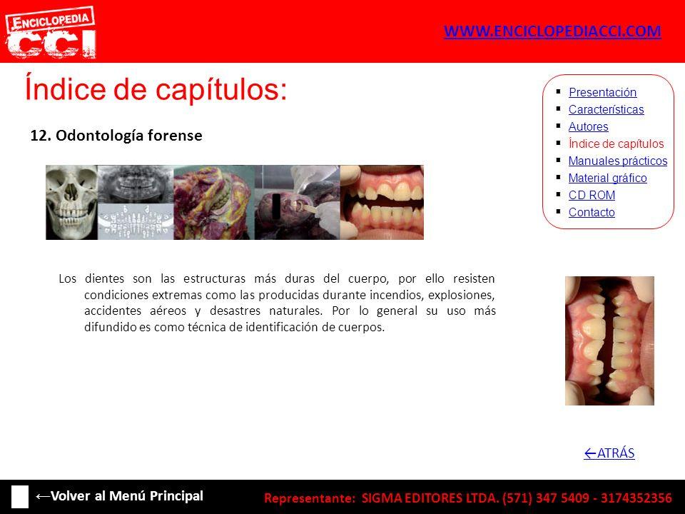 Índice de capítulos: Características Autores Índice de capítulos Manuales prácticos Material gráfico CD ROM Contacto Presentación 12. Odontología fore