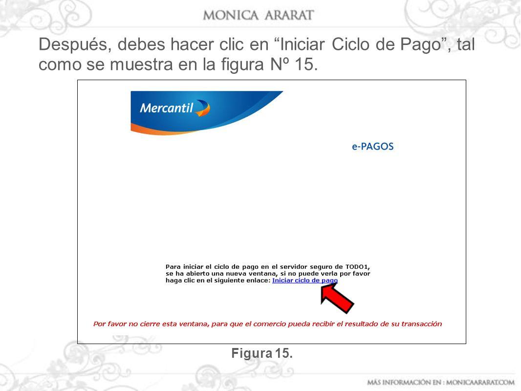 Después, debes hacer clic en Iniciar Ciclo de Pago, tal como se muestra en la figura Nº 15. Figura 15.