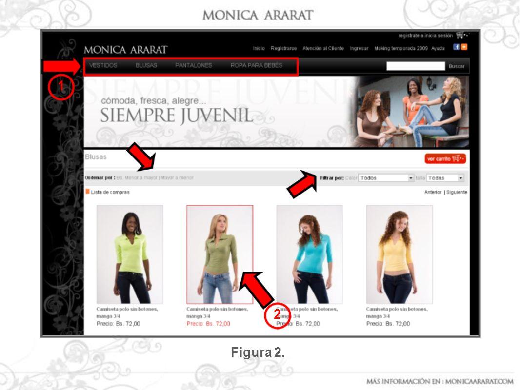 Una vez que haz dado clic en el botón: Ver Carrito, debe aparecer una pantalla como la que se muestra en la figura Nº 8.