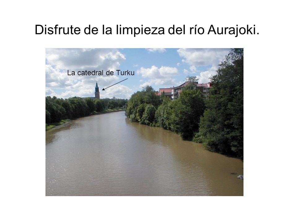 Disfrute de la limpieza del río Aurajoki. La catedral de Turku