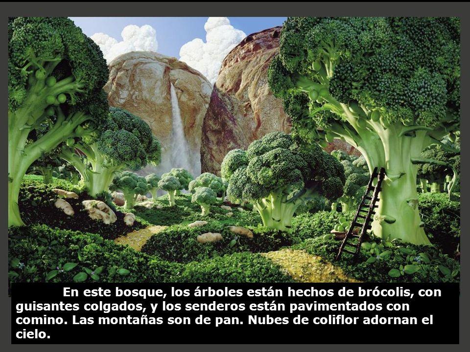 En este bosque, los árboles están hechos de brócolis, con guisantes colgados, y los senderos están pavimentados con comino.